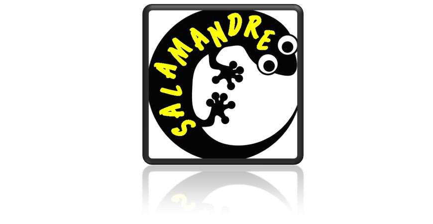 Quelle Salamandre !?!??