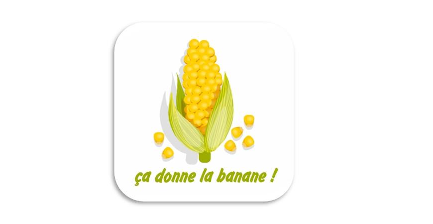 Mais ! du Maïs !!!